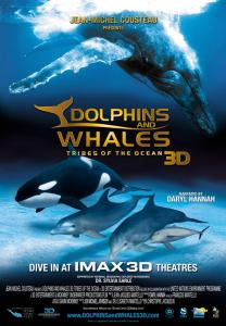 Dolphins and Whales 3D Poster