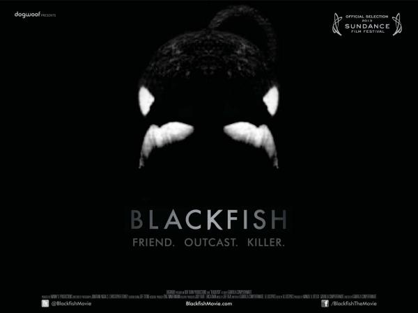 Dogwoof_Documentary_Blackfish_Quad_New_1600_1200_85_0.jpg