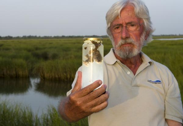 Jean-Michel observes the impact of oil and dispersant in the critical salt marsh habitats of Louisiana. Photo credit: © Carrie Vonderhaar, Ocean Futures Society