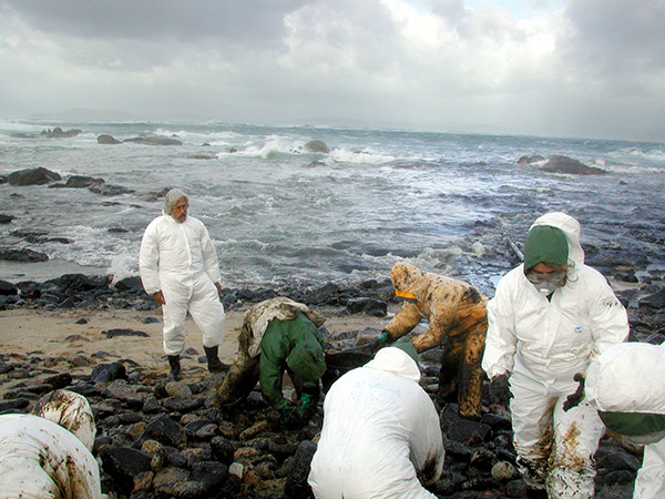 Jean-Michel Cousteau assists in the cleanup of the Prestige oil spill in Spain