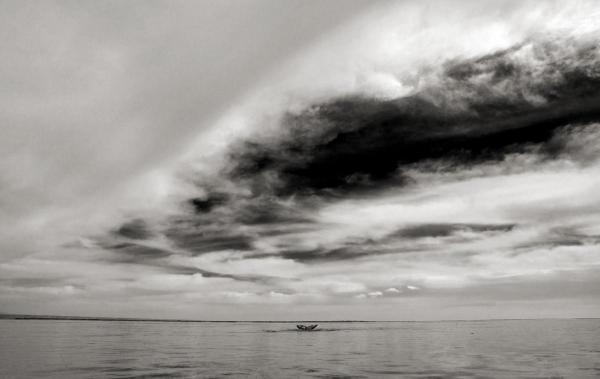 Grey Whale and Clouds